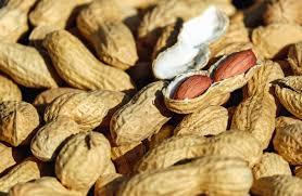 cacahuetes aumentar masa muscular